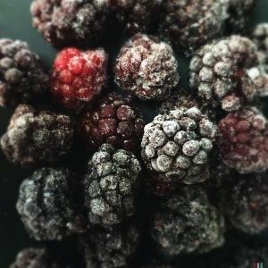 blackberryfrozen